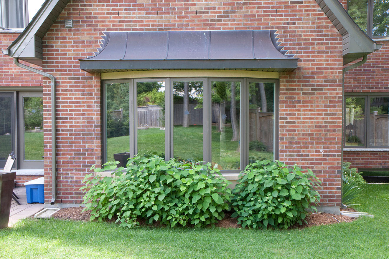 bay windows bow windows golden windows bay windows are three or more sided windows that protrude from the exterior wall of a home at 30 or 45 bow windows are created by joining multiple